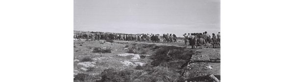 Jews arriving at reception camps