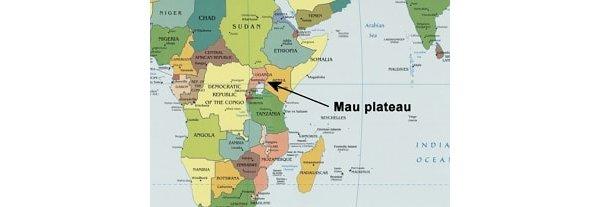 Mau plateau in Kenya