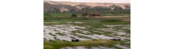 Egyptian irrigation canals